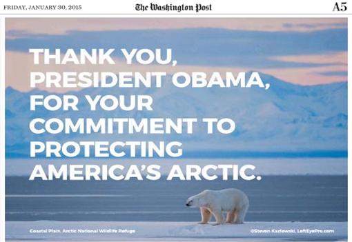 CCP Polar Bear Ad.png